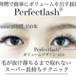 特許取得新技術『Perfect lash』特別セミナー|短期間でボリュームを出すことが可能。絶対取れない、外れない技術。毛が抜け落ちるまでずっと。だからPerfect lash。テクニックや商材がキーポイント